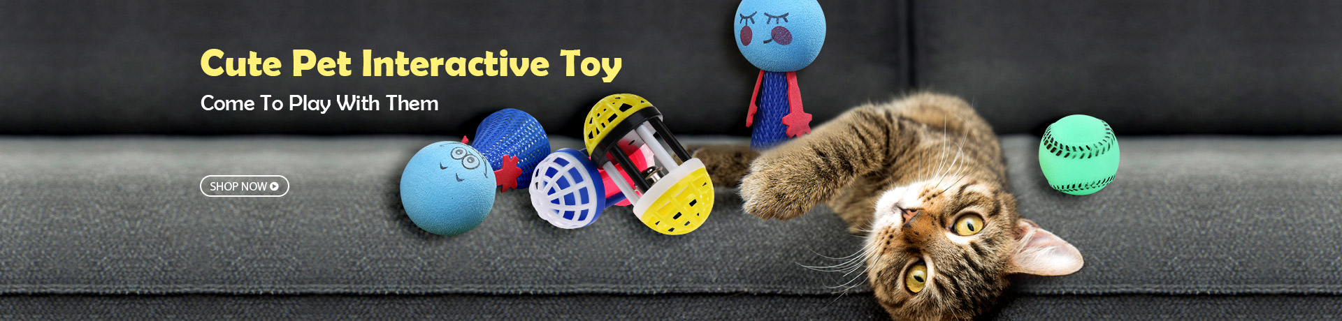 Cute Pet Interactive Toy